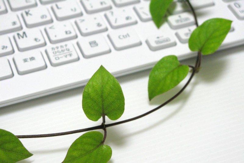 アドセンスに挑戦中のブログ